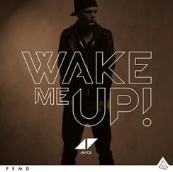 Avicii - Aloe Blacc Wake Me Up (Acoustic)